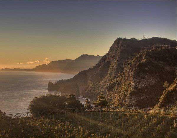 Madeira wine night